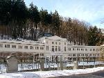 Karlovy Vary - Galerie d'art